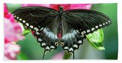 Tiger Swallowtail Butterfly Beach Towel
