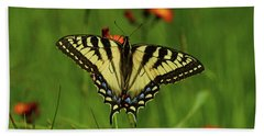 Tiger Swallowtail Butterfly Beach Sheet