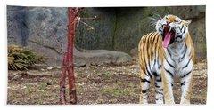 Tiger Tiger Burning Bright Beach Sheet