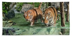 Tiger's Water Park Beach Towel by Don Olea