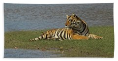 Tigress Beach Towel