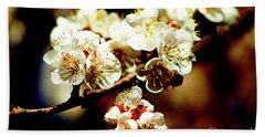 Timid Love Apricot Blossoms II Beach Sheet