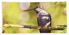 Tiny Bird Upon A Branch Beach Towel