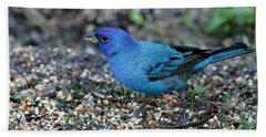 Tiny Indigo Bunting Beach Towel