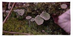 Tiny Mushrooms  Beach Towel