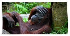 Tired Female Orangutan Ape Rests Against Tree With Hand On Her Head Beach Towel