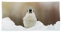 Tufted Titmouse In Snow Beach Towel
