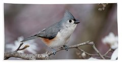 Beach Sheet featuring the photograph Titmouse Song - D010023 by Daniel Dempster