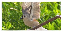 Beach Towel featuring the photograph Titmouse Takeoff by Kathy Kelly