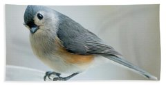 Titmouse With Walnuts Beach Towel