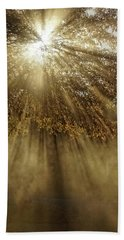 To Catch A Ray Of Sunlight Beach Towel
