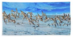Topsail Skimmers Beach Towel