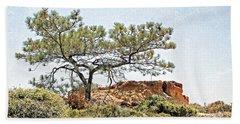 Torrey Pine 1 Beach Sheet