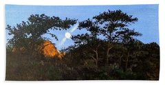Beach Towel featuring the painting Torrey Pines In The Morning by Kevin Daly