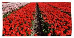 Tot Far Away Red Tulips Field Beach Towel by Mihaela Pater