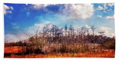 Beach Sheet featuring the photograph Touch Of Autumn In The Glades by Debra and Dave Vanderlaan
