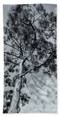 Beach Sheet featuring the photograph Towering by Linda Lees