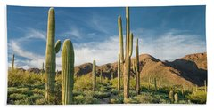 Trail Through Saguaro Beach Towel by Greg Nyquist