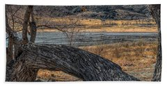 Tree At Elizabeth Lake Beach Sheet