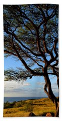 Tree At Lapakahi State Historical Park Beach Towel