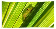 Tree Frog And Palm Frond Beach Sheet by Kenneth Albin