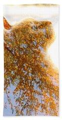 Tree In Cat Beach Sheet