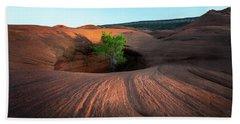 Tree In Desert Pothole Beach Towel