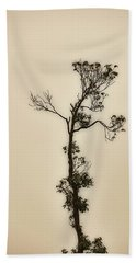 Tree In The Mist Beach Towel
