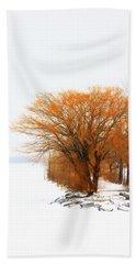 Tree In The Winter Beach Sheet