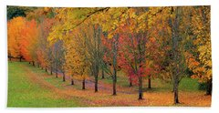 Tree Lined Path With Fall Foliage Beach Towel