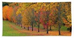 Tree Lined Path With Fall Foliage Beach Towel