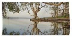 Beach Towel featuring the photograph Tree Love Down By The Lake by Keiran Lusk