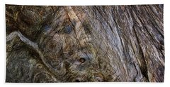 Beach Towel featuring the photograph Tree Memories # 19 by Ed Hall