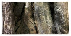 Beach Towel featuring the photograph Tree Memories # 24 by Ed Hall
