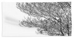 Tree No. 7-2 Beach Sheet