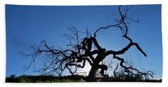 Beach Sheet featuring the photograph Tree Of Light - Straight View 2 by Matt Harang