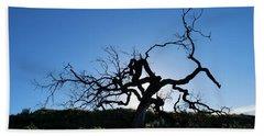 Beach Sheet featuring the photograph Tree Of Light - Straight View by Matt Harang