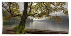 Tree On Cameron Lake Beach Towel