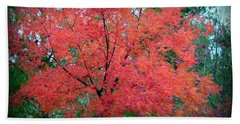 Beach Towel featuring the photograph Tree On Fire by AJ Schibig