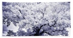 Beach Sheet featuring the photograph Tree by Paul W Faust - Impressions of Light