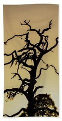Tree Silhouette Beach Sheet