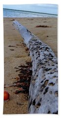 Tree Trunk And Shell On The Beach Full Size Beach Towel by Exploramum Exploramum