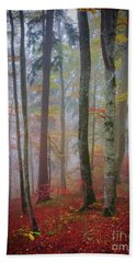 Beach Towel featuring the photograph Tree Trunks In Fog by Elena Elisseeva