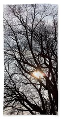 Beach Towel featuring the photograph Tree With A Heart by James BO Insogna