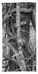 Treeform 4 Beach Sheet