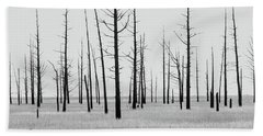 Trees Die Off Beach Towel