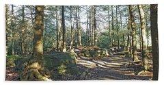 Trees Growing On Top Of Boulders - Ricketts Glen Beach Towel