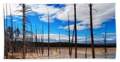 Beach Sheet featuring the photograph Trees In The Midway Geyser Basin by Lars Lentz