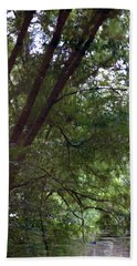 Trees Reflected In A Woodland Stream 2867 H_2 Beach Towel