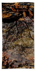 Beach Towel featuring the photograph Tree's Reflection by Iris Greenwell